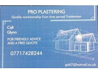 Pro Plastering: Professional Plasterer, with more than 30 years of experience (CSCS Certified)