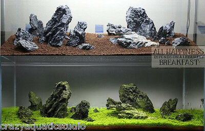 Aquascaping ADA Seiryu Stone rock aquarium tropical fish plant shrimp