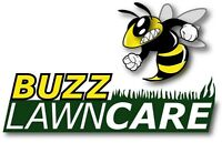 Professional University Student Lawn Mowing starting at $30/week