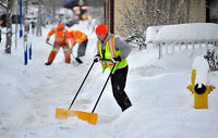 Looking for snow shovellers tonight Cole Harbour/Larry Uteck
