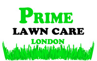 Lawn Care / Lawn Maintenance / Fall Fertilizing and Cleanup