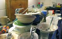 washing dishes and cleaning