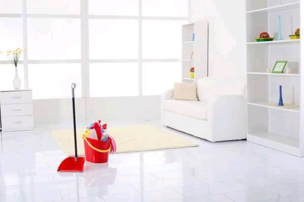 Domestic cleaner/ Home help
