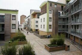 2 bedroom flat in Stepney Court - P1277