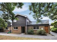** FIVE BEDROOM SEMI DETACHED HOUSE IN BROMLEY AVAILABLE EARLY SEPTEMBER **
