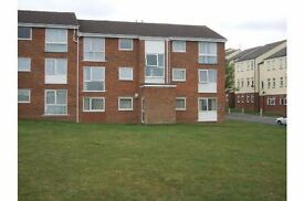 2 bed flat to rent in Braintree, Essex. Good sized rooms and well maintained. References needed