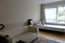 1 bedroom flat in Derby Road, London, E18