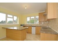 !!!STUDENTS LISTEN!!! 6 BED SEMI DET. HOUSE RIGHT BY TOTTERIDGE AND WHETSTONE STATION WITH GARDEN!!!