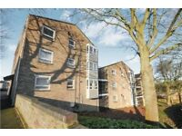 1 bedroom flat, furnished, 2nd floor, suitable for a professional or PHD student £850pm