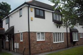 1 bedroom flat to rent - back up due to a time waster available now- tower grove Leigh £300pcm