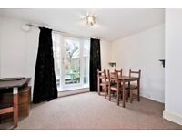 ***SPACIOUS ONE BEDROOM GARDEN FLAT ON CAMDEN ROAD, MINUTES FROM HOLLOWAY TUBE STATION***
