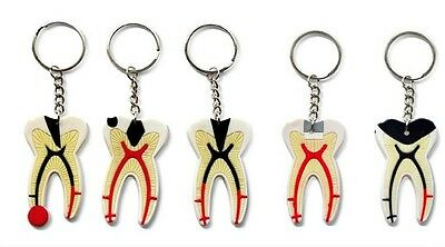 One Dental Keychain For Dentist Team Gift Molar Tooth Rubber Key Chain