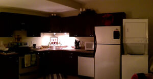 **Very MODERN 1 Bedroom/ 1 Bath Basement Suite** Bachelor Hts**