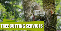 Tree cutting, brush cleaning, pruning