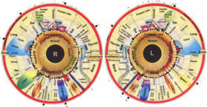 $35 Iridology Readings + Salt Therapy at Tip Top Health Shoppe!