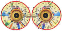 Iridology Readings in the Crystal Salt Spa $35