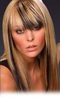 Foil Highlights Cut Style $85.00 Xtreme Hair Lengths Kitchener