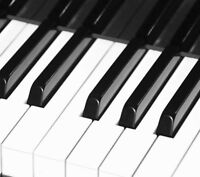 Piano and Violin Summer and Winter Lessons