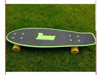 Genuine Penny Nickel Board 27 inch