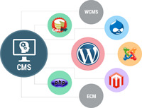 Ecommerce Services CMS/CRM Development