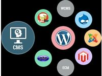 Open source frameworks in Joomla, WordPress, Magento, PHP Services