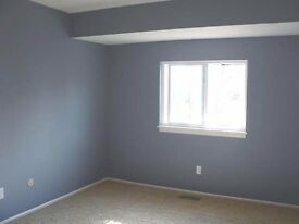 Painters and Decorators. Get a new lick of paint now!!