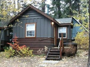Professional Couple Looking For Cottage Style Long Term Rental London Ontario image 1