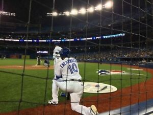 Toronto Blue Jays in the action seats