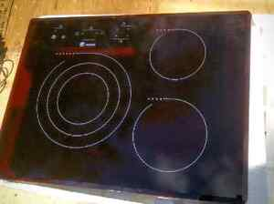 Fagor Induction Cooktop Cambridge Kitchener Area image 1