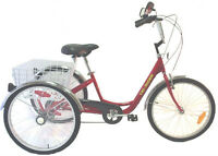 Tricycle Belize 24""