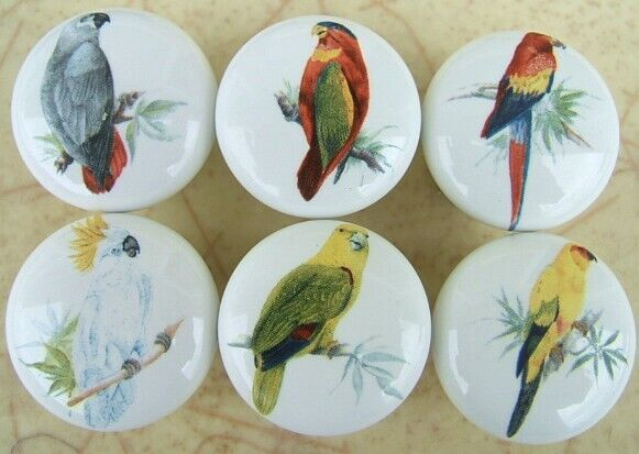 Cabinet Knobs W/ Parrot Macaw Cockatoo Tropical Birds #2