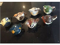 Collection of 7 Staffordshire Fine Ceramics Garden Birds Teapots