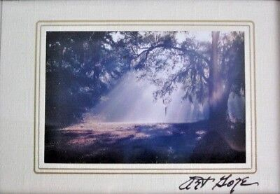 - Vintage Art Gore Signed Framed Matted Print Morning Sun Rays Woods Small 6x8