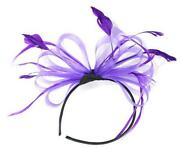 Purple Hair Fascinator