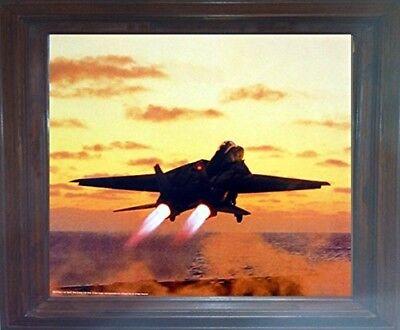 Squadron Print 514 F-14D Super Tomcat VF-31 USS Carl Vinson US Navy Aviation Art