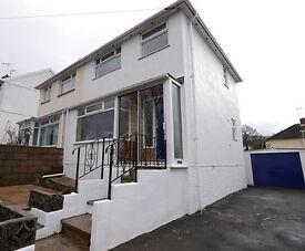 Well Presented 3 bedroomed semi detached house with enclosed garden - Newton Abbot.