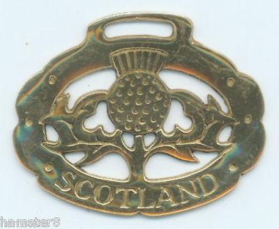 SCOTTISH THISTLE  (Oval)   Horse brass  (N192)