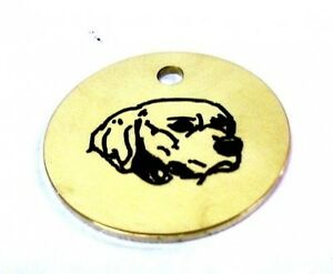 GOLDEN-RETRIEVER-ENGRAVED-BRASS-ID-TAG-FREE-POSTAGE