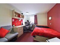 En-suite single room available £124pw