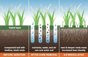 Fall Core Aeration + Seed - Combination Discount - Best Results!