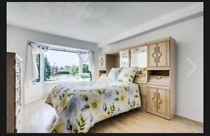 Moving out Sale - Double bed bedroom set