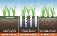 Aeration Lawn Service - Spring Aeration - Book Now for Spring :D