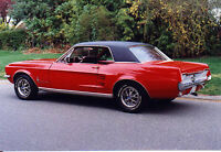 1967 Mustang - Trophy Winning Car