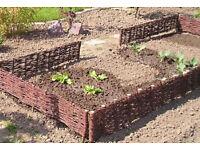 Wicker garden fence panels