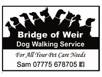 Dog Walker in Bridge of Weir, covering surrounding areas