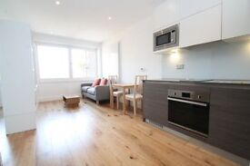 LUXURY STUDIO SUITE RIVERDALE HOUSE SE13 LEWISHAM LADY WELL HITHER GREEN CANARY WHARF