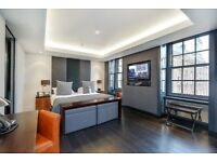 Studio flat in Park Lane, London