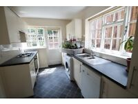 Beautiful Double Bedroom in a beautiful shared house in Bromley