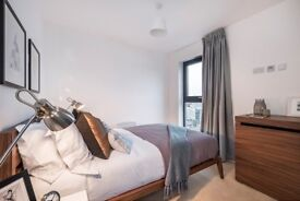 Ensuite double bedroom to rent - *** PRICE REDUCTION ***