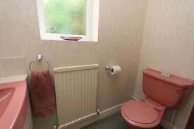 Royal Doulton Retro Pink Toilet & Sink